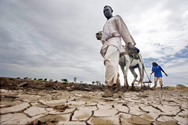 Displaced Darfuris Farm in Rainy Season