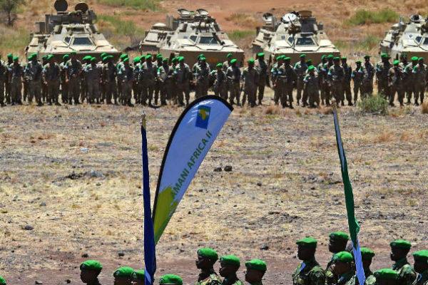 Amani Africa II