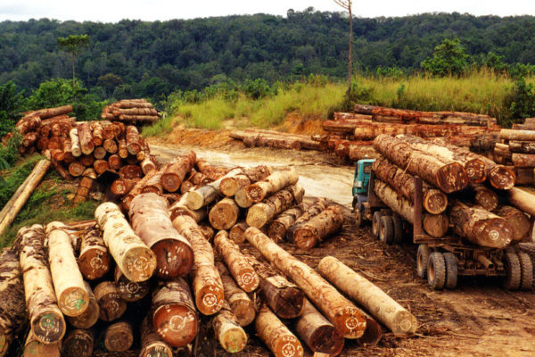 A logging truck in Cameroon. Photo: World Resources Institute