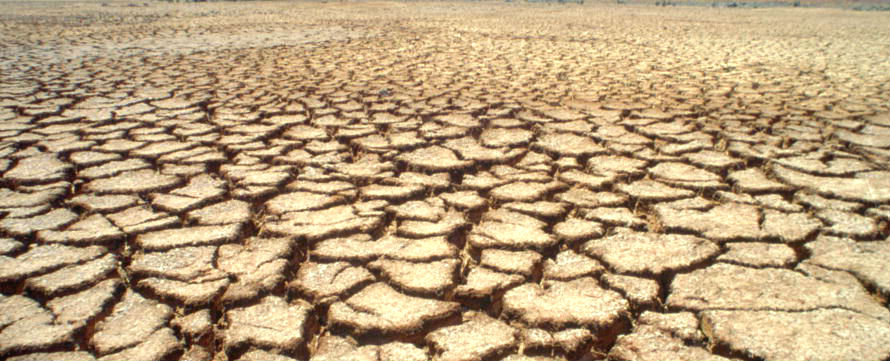 Cracked Earth in Nature Reserve of Popenguine in Senegal. Photo: UN