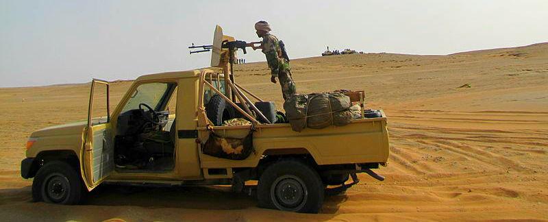 Les_Etats_du_Sahel_demandent_une_assistance_dans_la_lutte_contre_le_terrorisme_(6175011359) horiz