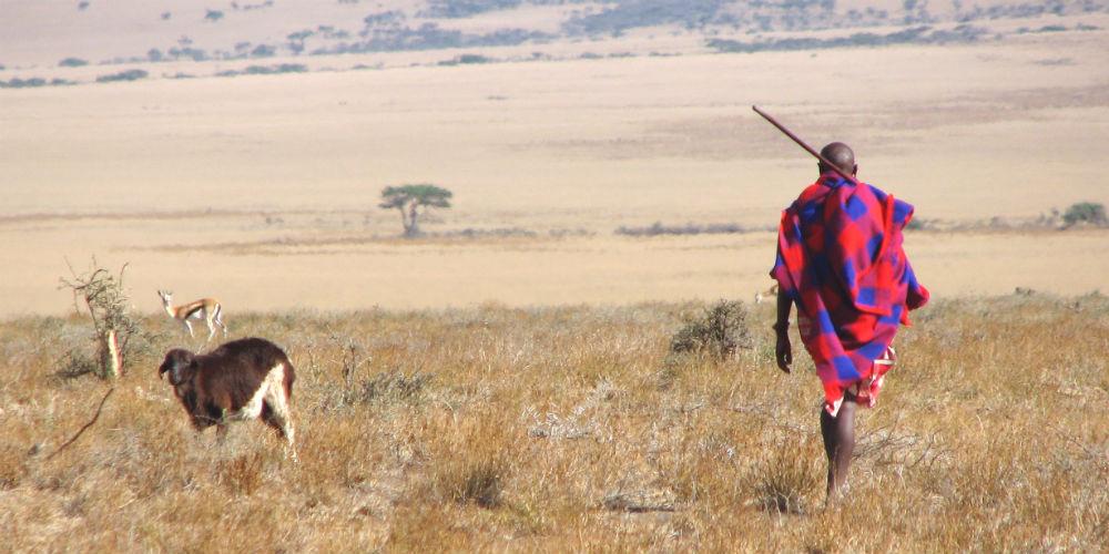 A Maasai man in the eastern Serengeti