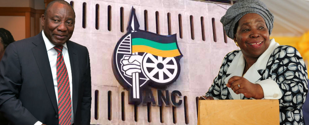 The ANC Conference and the Struggle for South Africa's Future ...