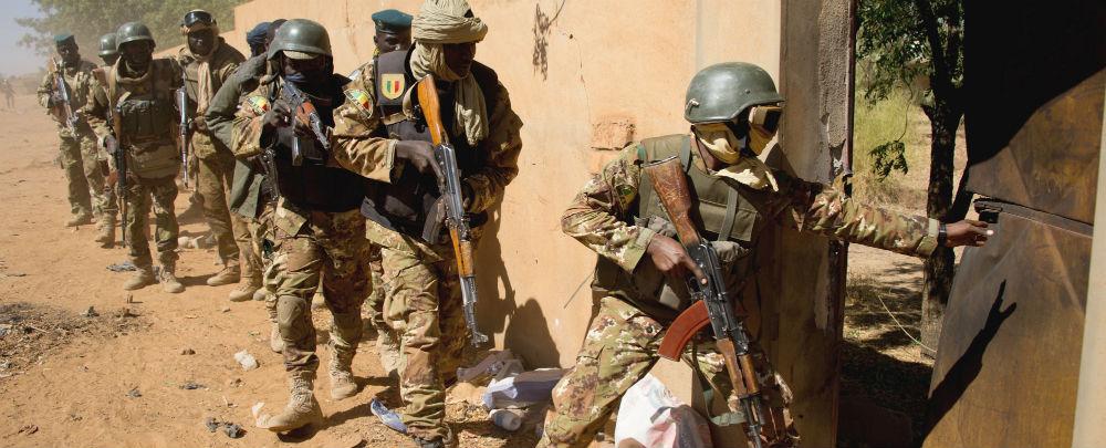 Sahel Force Cojointe