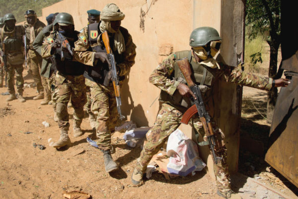 Sahel Force Cojointe