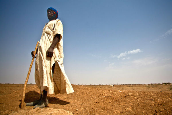 A herder in Mauritania