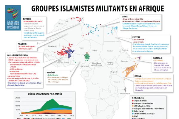 Progrès et revers dans la lutte contre les groupes islamistes militants en Afrique en 2018