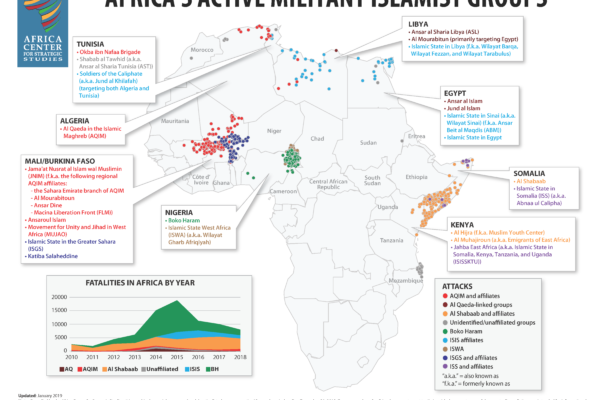 Progress and Setbacks in the Fight against African Militant Islamist Groups in 2018