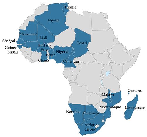 Élections en Afrique en 2019