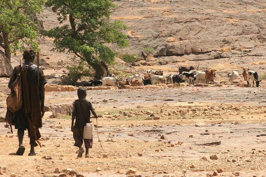 Malian Lt. Col. Alou Boi Diarra Honored by NDU for Research on Farmer-Herder Violence