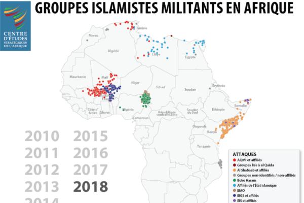 Constante évolution des premières lignes dans la lutte contre les groupes islamistes militants en Afrique