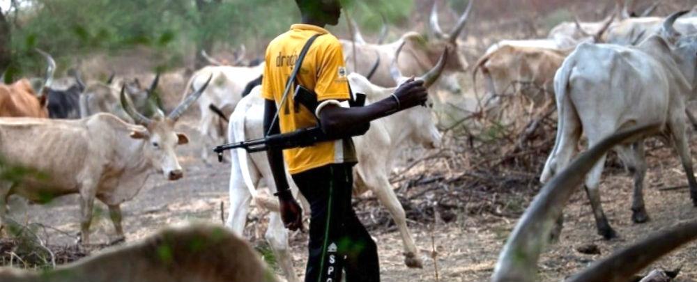 Un éleveur peul avec son troupeau