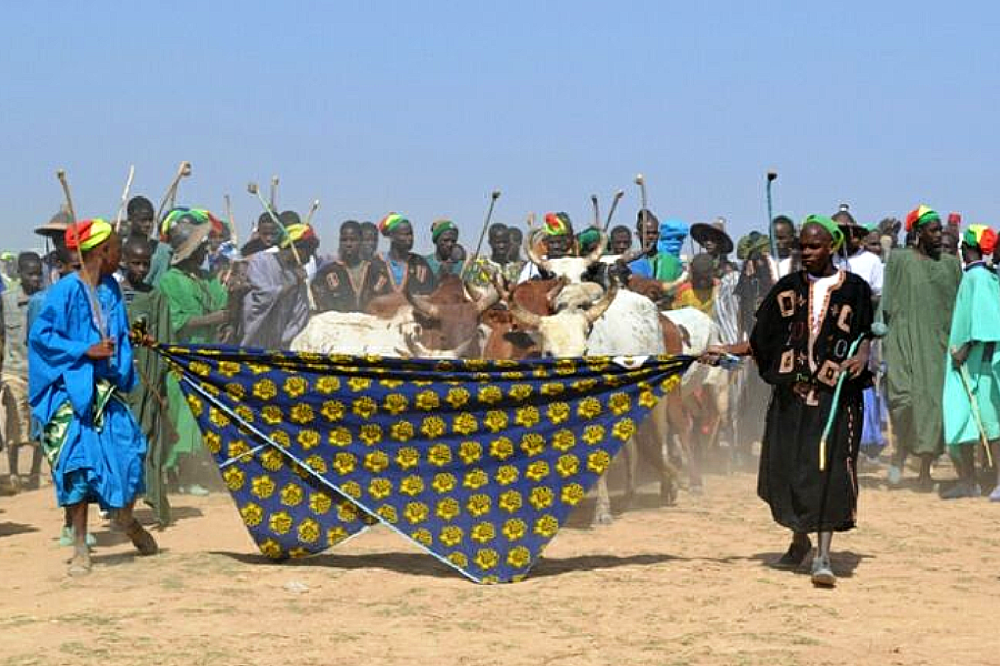 Understanding Fulani Perspectives on the Sahel Crisis