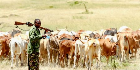The Growing Complexity of Farmer-Herder Conflict in West and Central Africa